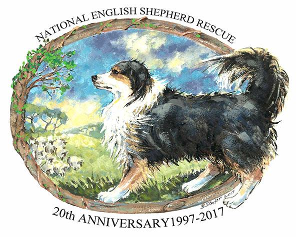 National English Shepherd Rescue | English Shepherd Dog